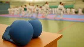 Μπλε karate γάντια στο tatami κατά τη διάρκεια της κατάρτισης, de-στραμμένης απόθεμα βίντεο
