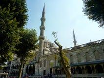 Μπλε moskey Istambul Στοκ Εικόνες