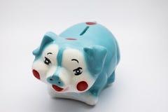 μπλε piggy τραπεζών στοκ φωτογραφίες