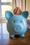 μπλε piggy τραπεζών Στοκ Εικόνες