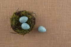 Μπλε Speckled αυγά και φωλιά Στοκ εικόνα με δικαίωμα ελεύθερης χρήσης