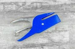 Μπλε stapler στοκ φωτογραφία