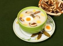 μυκητιακή εγγενής σούπα στοκ εικόνα με δικαίωμα ελεύθερης χρήσης