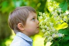 Μυρίζοντας λουλούδι αγοριών Στοκ εικόνες με δικαίωμα ελεύθερης χρήσης