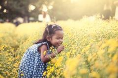Μυρίζοντας λουλούδι μικρών κοριτσιών παιδιών ασιατικό στον κήπο Στοκ Φωτογραφία