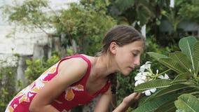 Μυρίζοντας λουλούδι νέων κοριτσιών στον κλάδο απόθεμα βίντεο