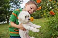 Μυρίζοντας λουλούδι σκυλιών εκμετάλλευσης αγοριών Στοκ Εικόνες