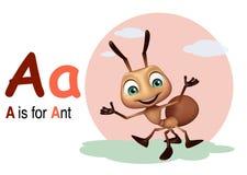 Μυρμήγκι με το alphabate Στοκ Φωτογραφίες