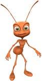 μυρμήγκι Στοκ φωτογραφίες με δικαίωμα ελεύθερης χρήσης