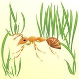 μυρμήγκι διανυσματική απεικόνιση