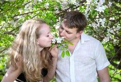 μυρωδιά λουλουδιών ζε&ups Στοκ φωτογραφίες με δικαίωμα ελεύθερης χρήσης