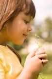μυρωδιά λουλουδιών στοκ εικόνες