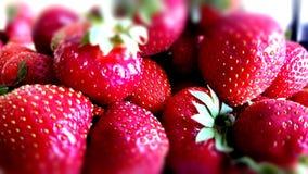 Μυρωδιά φραουλών στοκ φωτογραφίες με δικαίωμα ελεύθερης χρήσης