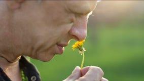 Μυρωδιά ατόμων ένα λουλούδι απόθεμα βίντεο
