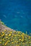 Μυρωδιά της θάλασσας, από Bonifacio Στοκ Εικόνες
