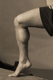 μυς μόσχων στοκ φωτογραφία