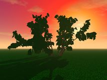 Μυστήρια δέντρα σε έναν τομέα ελεύθερη απεικόνιση δικαιώματος