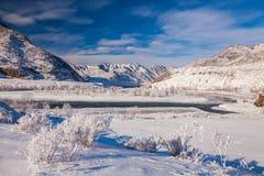 Μυστήρια μεγαλοπρεπή βουνά χειμερινών τοπίων το χειμώνα Μαγικό χειμερινό χιονισμένο δέντρο Στοκ Εικόνα