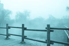 Μυστήριο τοπίο ομίχλης Στοκ Εικόνες