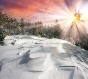 Μυστήριο φθινοπώρου ` s Στοκ φωτογραφία με δικαίωμα ελεύθερης χρήσης