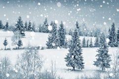 Μυστήριο χειμερινό τοπίο με τα δέντρα έλατου Στοκ Φωτογραφίες
