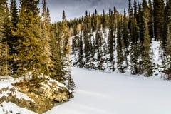 Μυστηριώδες χειμερινό πρωί, επαρχιακή περιοχή αναψυχής βόρειων φαντασμάτων, Αλμπέρτα, Καναδάς στοκ εικόνα