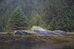 Μυστηριώδης πυράκτωση στον υπόλευκο βράχο στο δασικό κόλπο νεράιδων Στοκ Εικόνα