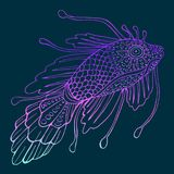 Μυστικά ψάρια φαντασίας Στοκ εικόνα με δικαίωμα ελεύθερης χρήσης