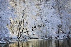 Μυστική λίμνη Στοκ Εικόνες