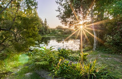 Μυστικός λοβός κήπων Στοκ εικόνες με δικαίωμα ελεύθερης χρήσης