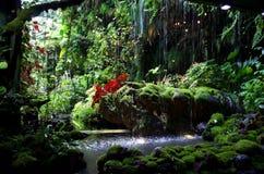 μυστικό κήπων στοκ εικόνες με δικαίωμα ελεύθερης χρήσης