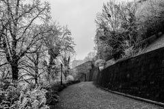 Μυστικό παγωμένο τοπίο μια ομιχλώδη ημέρα στη Βουδαπέστη, Ουγγαρία στοκ φωτογραφία με δικαίωμα ελεύθερης χρήσης