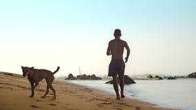 Μυϊκά τρεξίματα αθλητικών τύπων κατά μήκος της υγρής κίτρινης άμμου με το αστείο σκυλί απόθεμα βίντεο