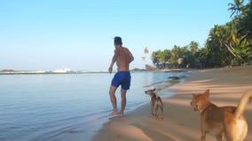 Μυϊκά τρεξίματα αθλητών με το σκυλί κατά μήκος της ακτής και woges απόθεμα βίντεο