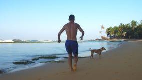 Μυϊκές γενειοφόρες τρεξίματα και στροφές αθλητών κοντά στο σκυλί αργό απόθεμα βίντεο