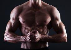 Μυϊκός αρσενικός κορμός με τα φω'τα που εμφανίζουν λεπτομέρεια μυών Στοκ εικόνες με δικαίωμα ελεύθερης χρήσης