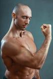 μυϊκός ισχυρός ατόμων Στοκ Φωτογραφία