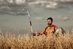 Μυϊκός μεσαιωνικός πολεμιστής που στέκεται στον τομέα Στοκ Εικόνα