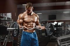 Μυϊκό άτομο που επιλύει στη γυμναστική που κάνει τις ασκήσεις με το barbell στους δικέφαλους μυς, αρσενικά γυμνά ABS κορμών Στοκ Εικόνες
