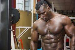 Μυϊκό μαύρο bodybuilder Hunky που επιλύει μέσα στοκ φωτογραφίες