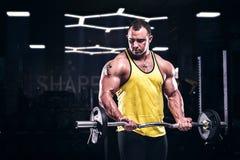 Μυϊκό bodybuilder που κάνει την άσκηση δικέφαλων μυών στη γυμναστική Στοκ Εικόνες