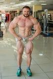 Μυϊκό bodybuilder στοκ φωτογραφίες με δικαίωμα ελεύθερης χρήσης