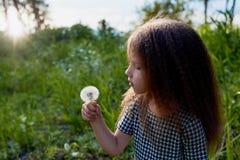 Μωρό 4 έτη, με τα μπλε μάτια, μικρές μπούκλες Ένας θαυμάσιος χρόνος της παιδικής ηλικίας και της περιπέτειας Θερμό φως του ήλιου  στοκ φωτογραφίες