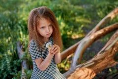 Μωρό 4 έτη, με τα μπλε μάτια, μικρές μπούκλες Ένας θαυμάσιος χρόνος της παιδικής ηλικίας και της περιπέτειας Θερμό φως του ήλιου  στοκ φωτογραφία με δικαίωμα ελεύθερης χρήσης