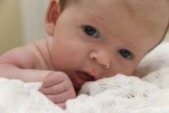 μωρό αρκετά στοκ φωτογραφία