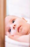 μωρό λίγα Στοκ Φωτογραφία