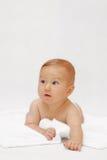 μωρό λίγα Στοκ Εικόνα