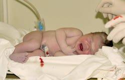 μωρό νεογέννητο Στοκ εικόνα με δικαίωμα ελεύθερης χρήσης