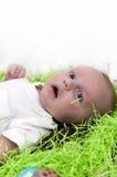 μωρό Πάσχα Στοκ φωτογραφία με δικαίωμα ελεύθερης χρήσης