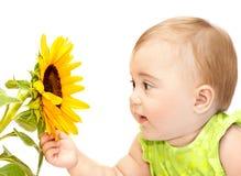 μωρό που εξερευνά το κορίτσι λουλουδιών Στοκ Εικόνες